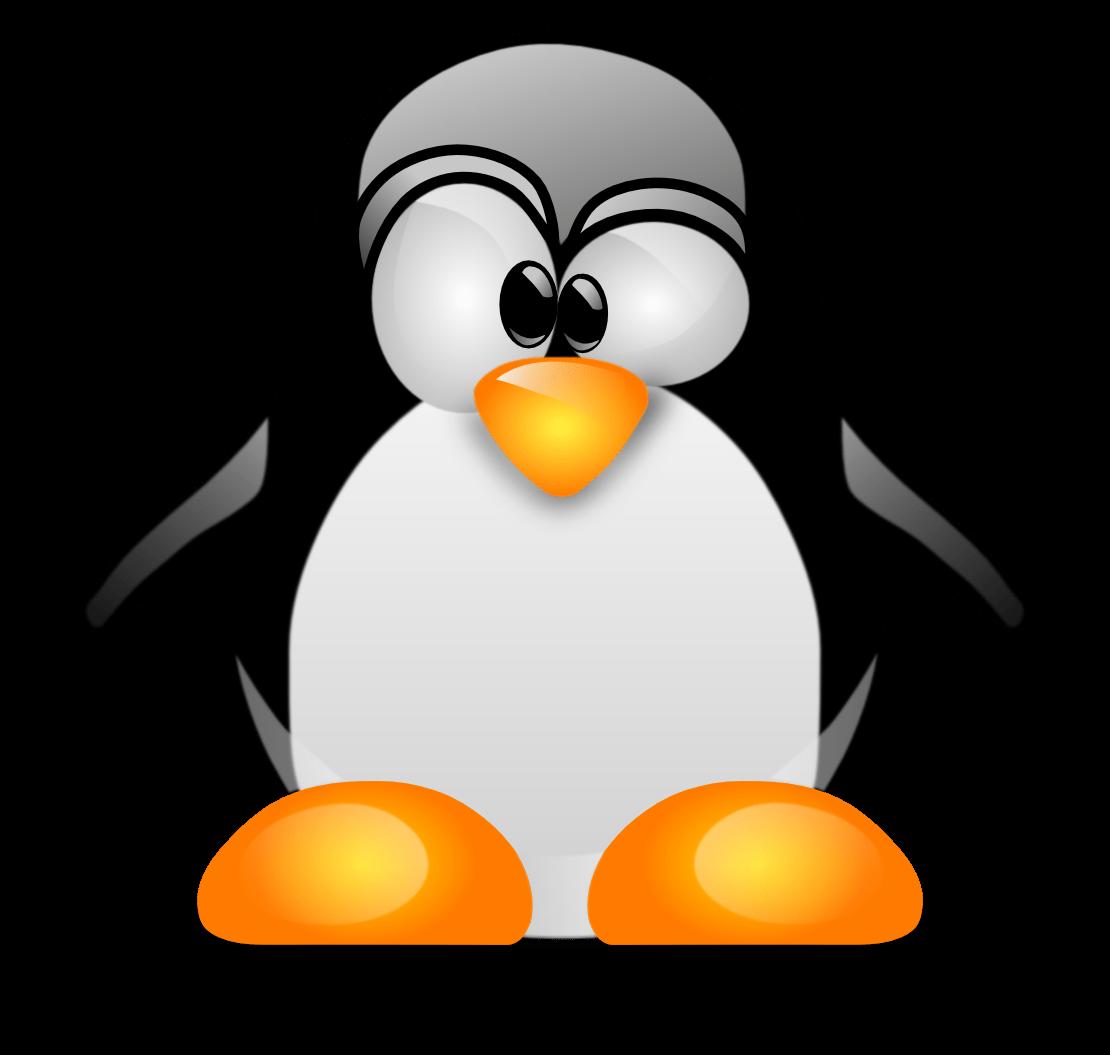 Manual Zoiper Linux - Número Virtual